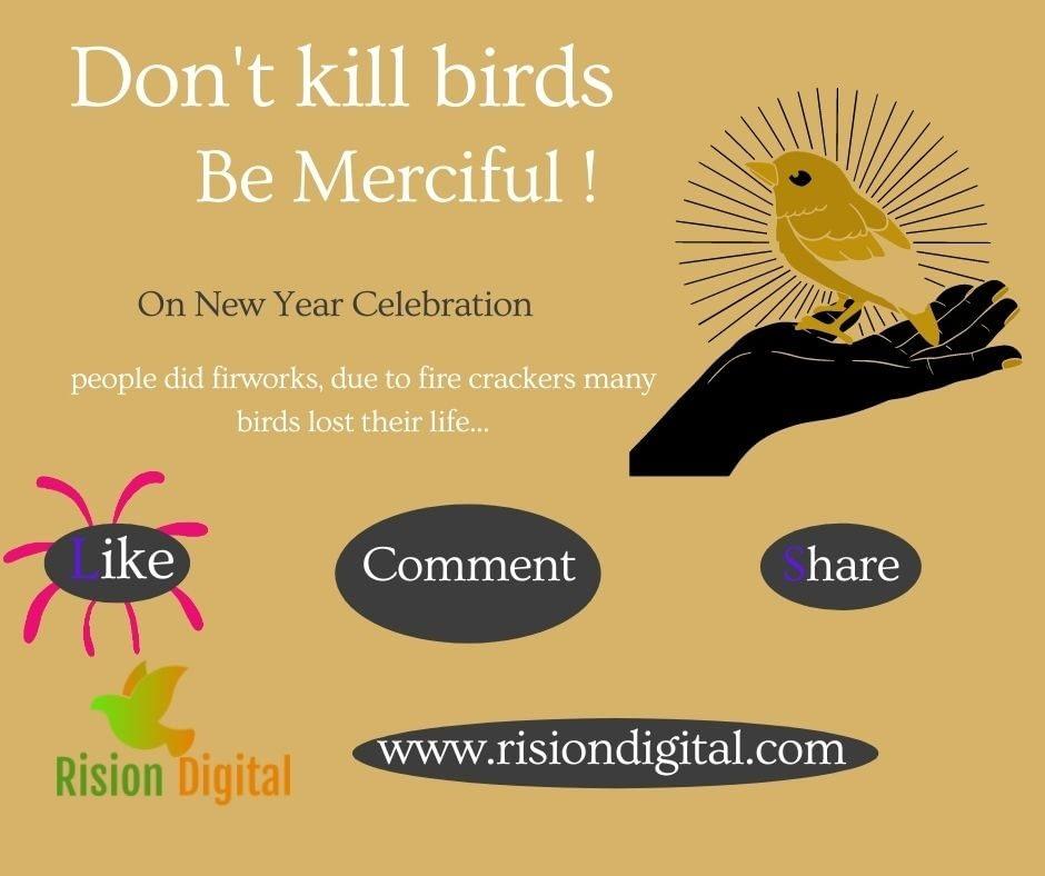 Don't Kill Birds, Be Kind & Merciful
